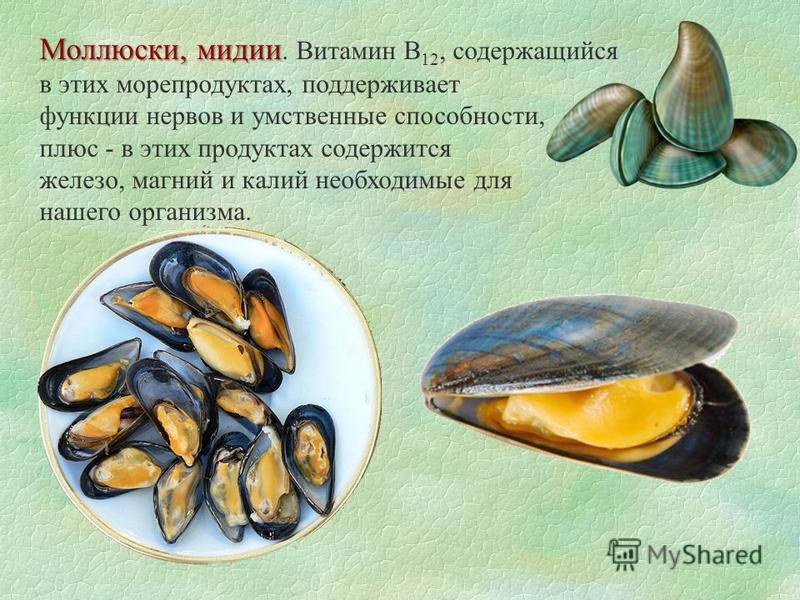 Моллюски, мидии Моллюски, мидии. Витамин B 12, содержащийся в этих морепродуктах, поддерживает функции нервов и умственные способности, плюс - в этих продуктах содержится железо, магний и калий необходимые для нашего организма.