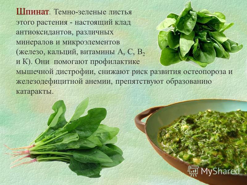 Шпинат Шпинат. Темно-зеленые листья этого растения - настоящий клад антиоксидантов, различных минералов и микроэлементов (железо, кальций, витамины А, С, В 2 и К). Они помогают профилактике мышечной дистрофии, снижают риск развития остеопороза и желе