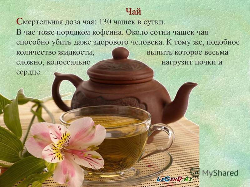 Чай С С мертельная доза чая: 130 чашек в сутки. В чае тоже порядком кофеина. Около сотни чашек чая способно убить даже здорового человека. К тому же, подобное количество жидкости, выпить которое весьма сложно, колоссально нагрузит почки и сердце.