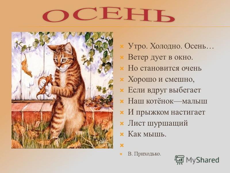 Утро. Холодно. Осень… Ветер дует в окно. Но становится очень Хорошо и смешно, Если вдруг выбегает Наш котёнокмалыш И прыжком настигает Лист шуршащий Как мышь. В. Приходько.