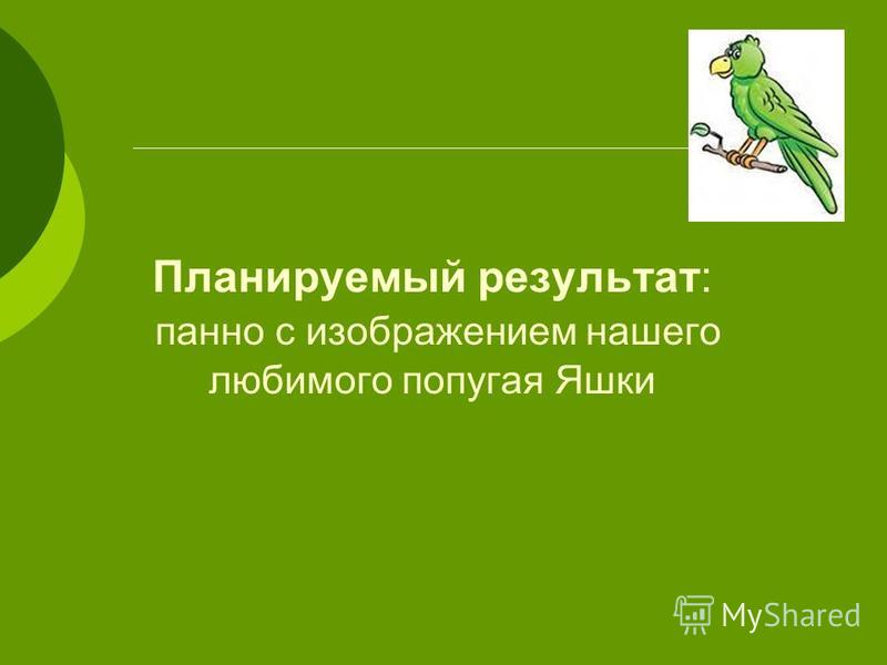 Планируемый результат: панно с изображением нашего любимого попугая Яшки