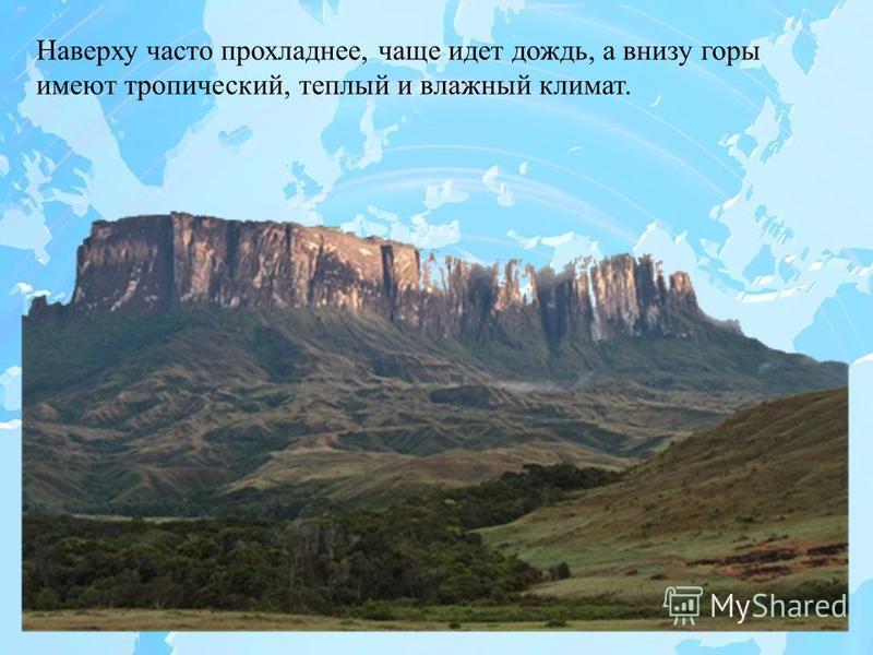 Наверху часто прохладнее, чаще идет дождь, а внизу горы имеют тропический, теплый и влажный климат.