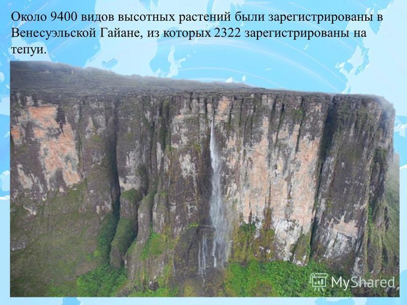 Около 9400 видов высотных растений были зарегистрированы в Венесуэльской Гайане, из которых 2322 зарегистрированы на тепуи.