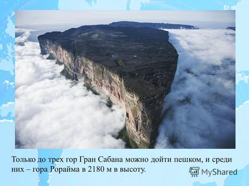 Только до трех гор Гран Сабана можно дойти пешком, и среди них – гора Рорайма в 2180 м в высоту.