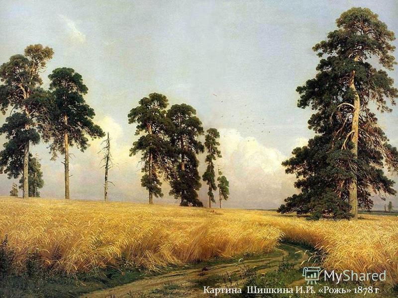 Картина Шишкина И.И. «Рожь» 1878 г.