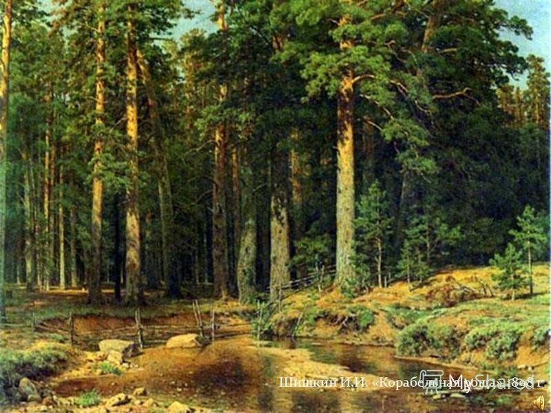 Шишкин И.И. «Корабельная роща» 1898 г.