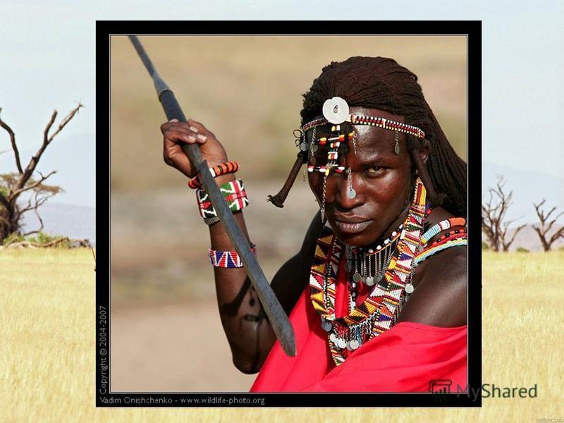 Большую часть материка южнее Сахары населяют негроиды, которые составляют африканскую ветвь экваториальной расы. Среди негроидов имеются значительные различия в цвете кожи, росте, в чертах лица, в форме головы. Самые высокие народы Африки живут в сав