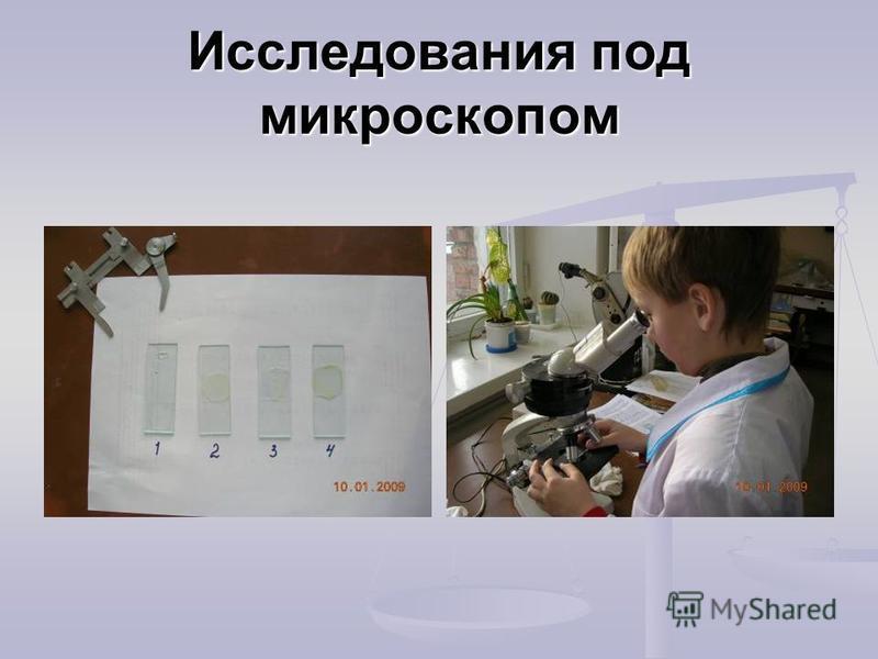 Исследования под микроскопом
