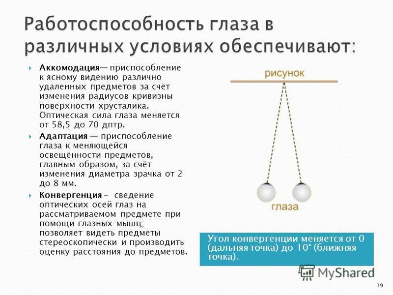 Угол конвергенции меняется от 0 (дальняя точка) до 10° (ближняя точка). Аккомодация приспособление к ясному видению различно удаленных предметов за счёт изменения радиусов кривизны поверхности хрусталика. Оптическая сила глаза меняется от 58,5 до 70