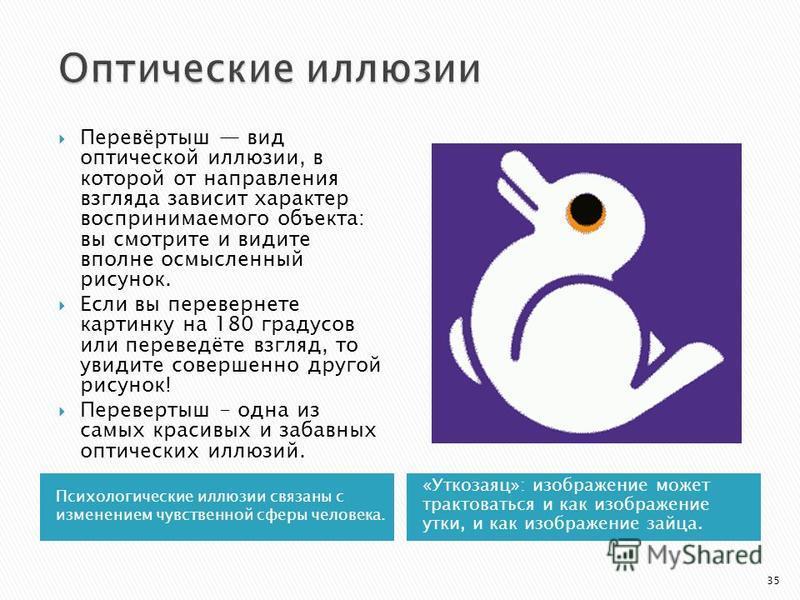 Психологические иллюзии связаны с изменением чувственной сферы человека. «Уткозаяц»: изображение может трактоваться и как изображение утки, и как изображение зайца. Перевёртыш вид оптической иллюзии, в которой от направления взгляда зависит характер