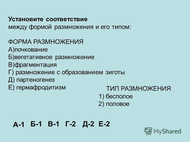 Установите соответствие между формой размножения и его типом: ФОРМА РАЗМНОЖЕНИЯ А)почкование Б)вегетативное размножение В)фрагментация Г) размножение с образованием зиготы Д) партеногенез Е) гермафродитизм ТИП РАЗМНОЖЕНИЯ 1) бесполое 2) половое А-1 Б