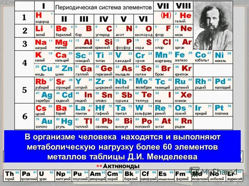 В организме человека находятся и выполняют метаболическую нагрузку более 60 элементов металлов таблицы Д.И. Менделеева
