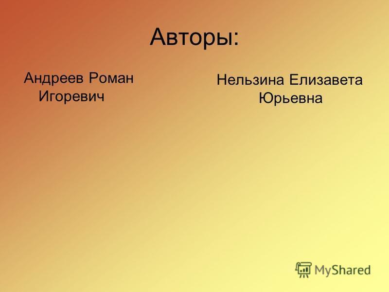 Авторы: Андреев Роман Игоревич Нельзина Елизавета Юрьевна