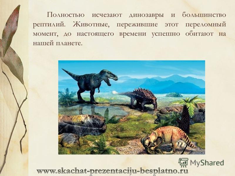 Полностью исчезают динозавры и большинство рептилий. Животные, пережившие этот переломный момент, до настоящего времени успешно обитают на нашей планете.