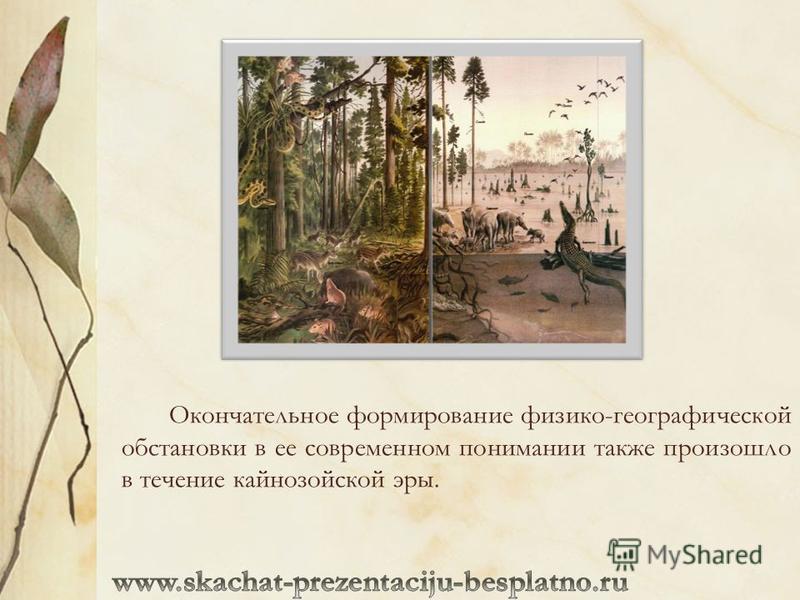 Окончательное формирование физико-географической обстановки в ее современном понимании также произошло в течение кайнозойской эры.