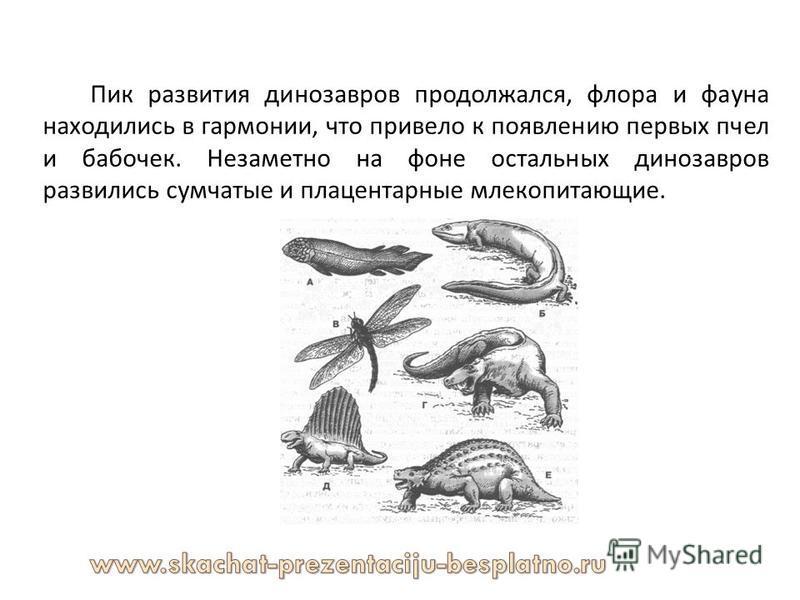 Пик развития динозавров продолжался, флора и фауна находились в гармонии, что привело к появлению первых пчел и бабочек. Незаметно на фоне остальных динозавров развились сумчатые и плацентарные млекопитающие.