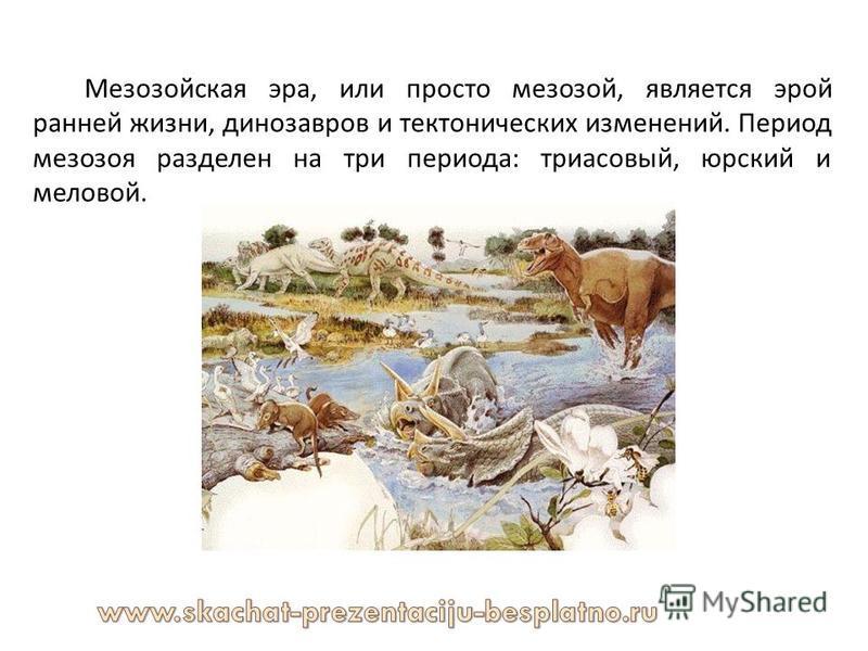 Мезозойская эра, или просто мезозой, является эрой ранней жизни, динозавров и тектонических изменений. Период мезозоя разделен на три периода : триасовый, юрский и меловой.