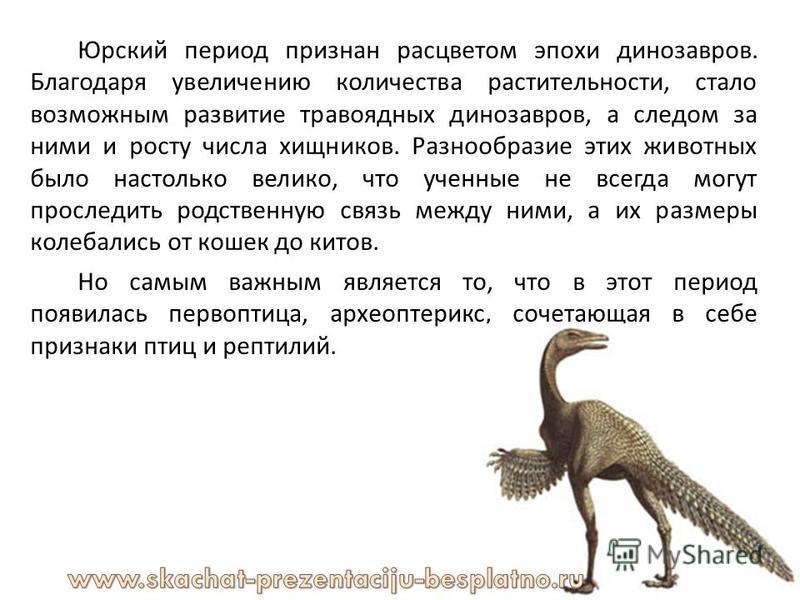 Юрский период признан расцветом эпохи динозавров. Благодаря увеличению количества растительности, стало возможным развитие травоядных динозавров, а следом за ними и росту числа хищников. Разнообразие этих животных было настолько велико, что ученные н