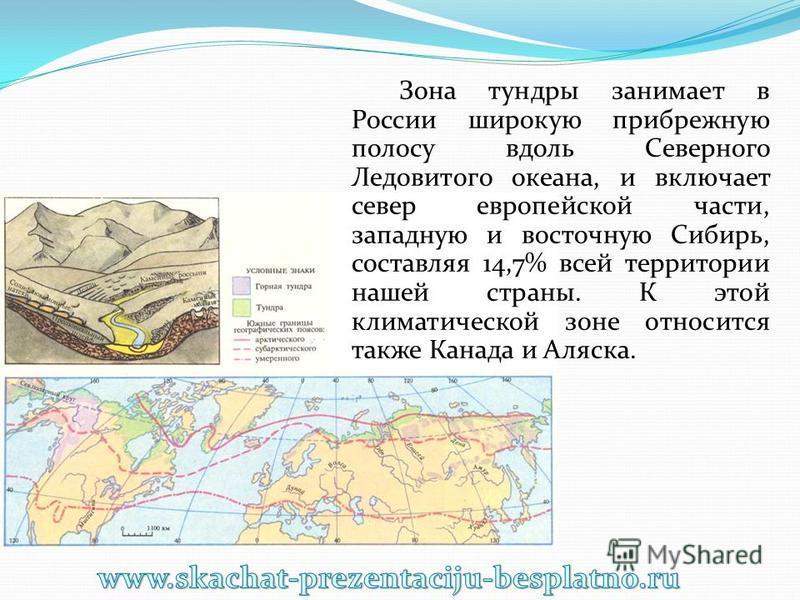 Зона тундры занимает в России широкую прибрежную полосу вдоль Северного Ледовитого океана, и включает север европейской части, западную и восточную Сибирь, составляя 14,7% всей территории нашей страны. К этой климатической зоне относится также Канада