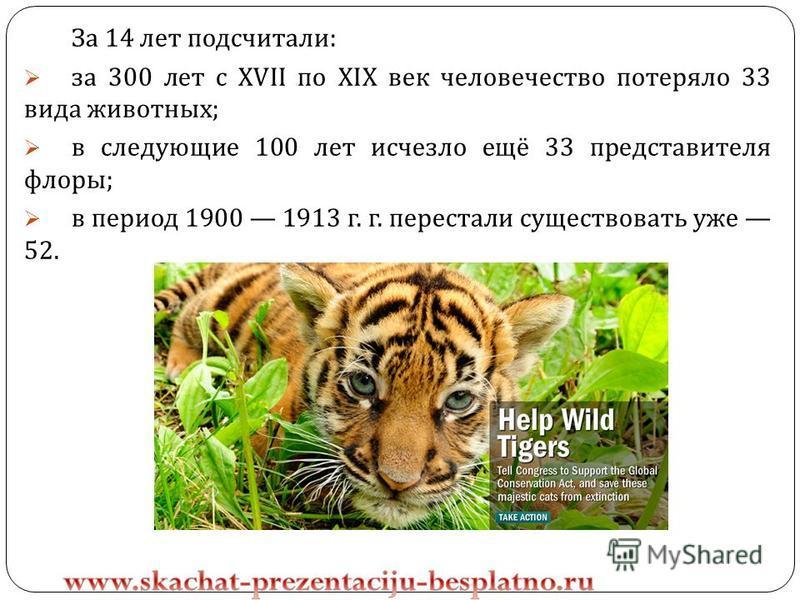 За 14 лет подсчитали : за 300 лет с XVII по XIX век человечество потеряло 33 вида животных ; в следующие 100 лет исчезло ещё 33 представителя флоры ; в период 1900 1913 г. г. перестали существовать уже 52.