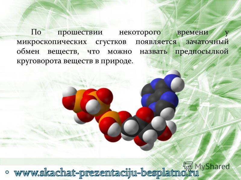 По прошествии некоторого времени у микроскопических сгустков появляется зачаточный обмен веществ, что можно назвать предпосылкой круговорота веществ в природе.