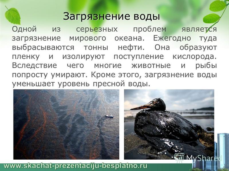 Загрязнение воды Одной из серьезных проблем является загрязнение мирового океана. Ежегодно туда выбрасываются тонны нефти. Она образуют пленку и изолируют поступление кислорода. Вследствие чего многие животные и рыбы попросту умирают. Кроме этого, за