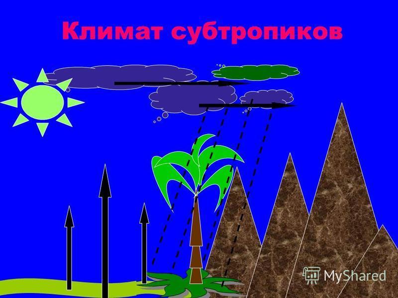 Климат субтропиков