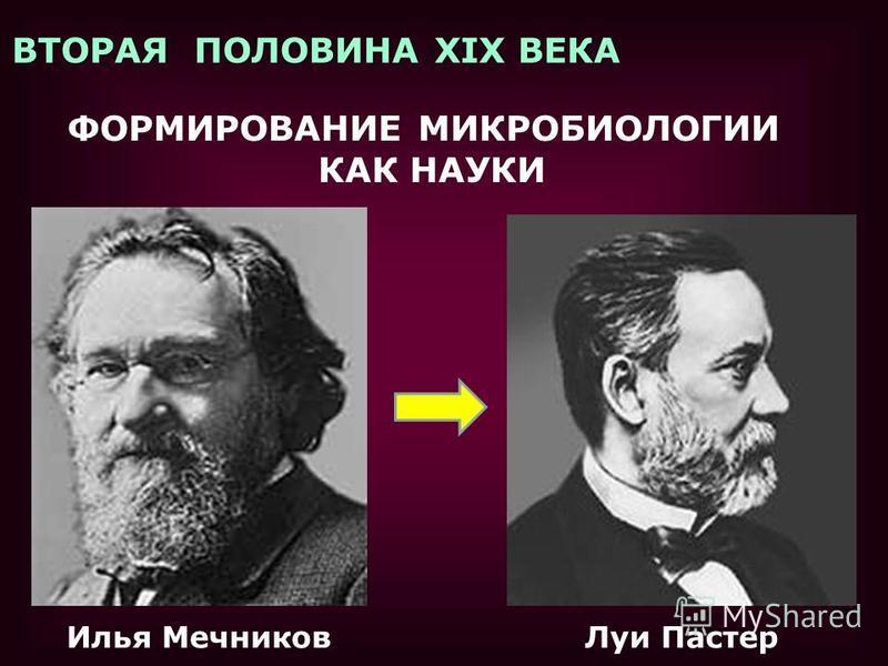 ВТОРАЯ ПОЛОВИНА XIX ВЕКА ФОРМИРОВАНИЕ МИКРОБИОЛОГИИ КАК НАУКИ Илья Мечников Луи Пастер