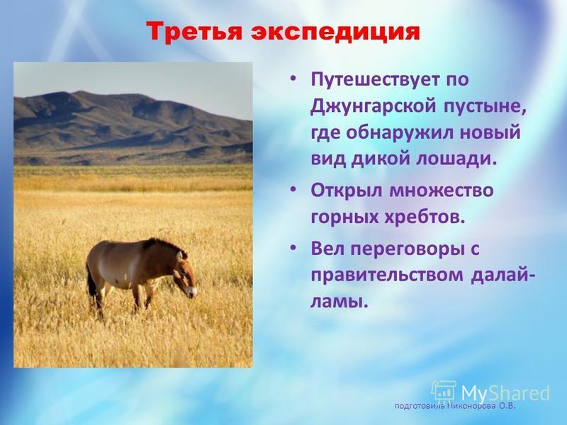 Третья экспедиция Путешествует по Джунгарской пустыне, где обнаружил новый вид дикой лошади. Открыл множество горных хребтов. Вел переговоры с правительством далай- ламы. подготовила Никонорова О.В.