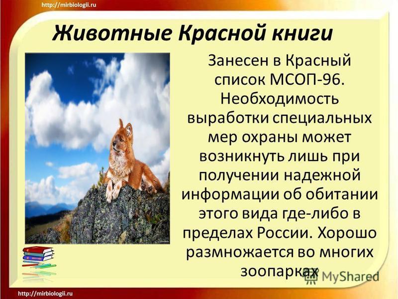 Животные Красной книги Занесен в Красный список МСОП-96. Необходимость выработки специальных мер охраны может возникнуть лишь при получении надежной информации об обитании этого вида где-либо в пределах России. Хорошо размножается во многих зоопарках