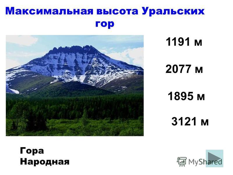 Максимальная высота Уральских гор 1895 м 1191 м 2077 м 3121 м Гора Народная