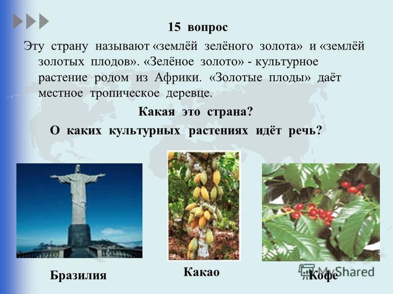 15 вопрос Эту страну называют «землёй зелёного золота» и «землёй золотых плодов». «Зелёное золото» - культурное растение родом из Африки. «Золотые плоды» даёт местное тропическое деревце. Какая это страна? О каких культурных растениях идёт речь? Браз