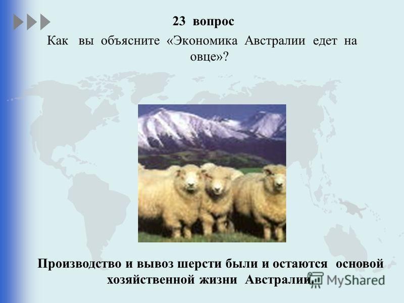 23 вопрос Как вы объясните «Экономика Австралии едет на овце»? Производство и вывоз шерсти были и остаются основой хозяйственной жизни Австралии.