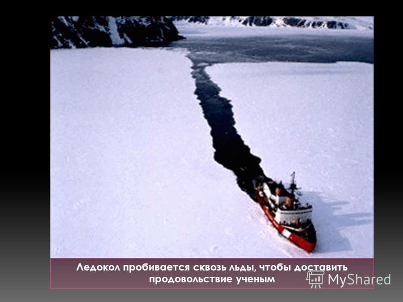 Ледокол пробивается сквозь льды, чтобы доставить продовольствие ученым