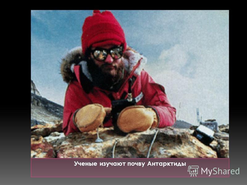 Ученые изучают почву Антарктиды