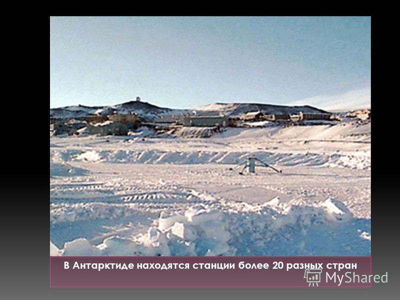 В Антарктиде находятся станции более 20 разных стран