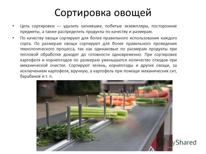 Сортировка овощей Цель сортировки удалить загнившие, побитые экземпляры, посторонние предметы, а также распределить продукты по качеству и размерам. По качеству овощи сортируют для более правильного использования каждого сорта. По размерам овощи сорт