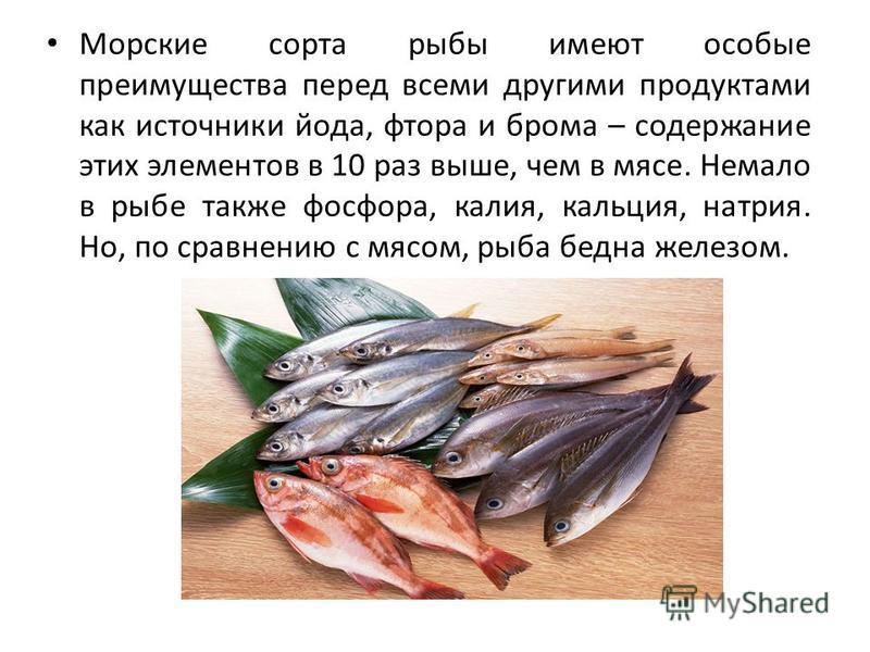 Морские сорта рыбы имеют особые преимущества перед всеми другими продуктами как источники йода, фтора и брома – содержание этих элементов в 10 раз выше, чем в мясе. Немало в рыбе также фосфора, калия, кальция, натрия. Но, по сравнению с мясом, рыба б