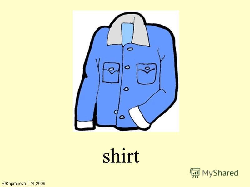 shirt ©Kapranova T.M.,2009