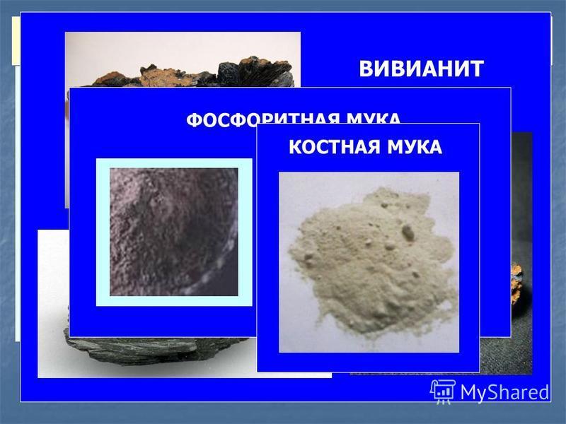 ФОСФОРИТНАЯ МУКА 25% P 2 O 5 – высший сорт 22% P 2 O 5 – первый сорт 19% P 2 O 5 – второй сорт ВИВИАНИТ (БОЛОТНАЯ РУДА) фосфорнокислая закисная соль железа Fe 3 (PO 4 ) 2 8H 2 O – 28% P 2 O 5 КОСТНАЯ МУКА ФОСФАТЫ НЕРАСТВОРИМЫЕ В ВОДЕ И СЛАБЫХ КИСЛОТА