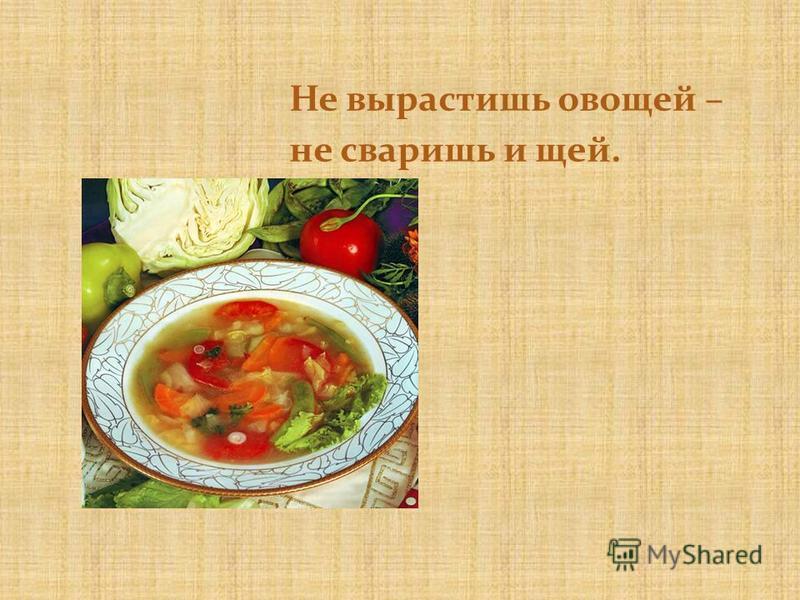 Не вырастишь овощей – не сваришь и щей.
