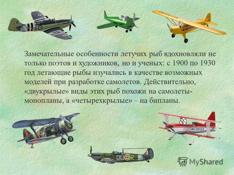 Замечательные особенности летучих рыб вдохновляли не только поэтов и художников, но и ученых: с 1900 по 1930 год летающие рыбы изучались в качестве возможных моделей при разработке самолетов. Действительно, «двукрылые» виды этих рыб похожи на самолет
