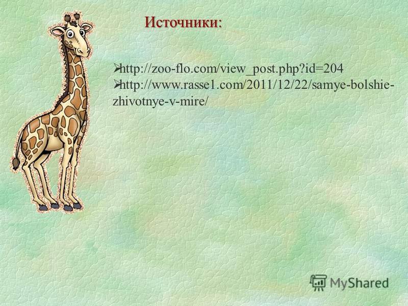 http://zoo-flo.com/view_post.php?id=204 http://www.rasse1.com/2011/12/22/samye-bolshie- zhivotnye-v-mire/ Источники: