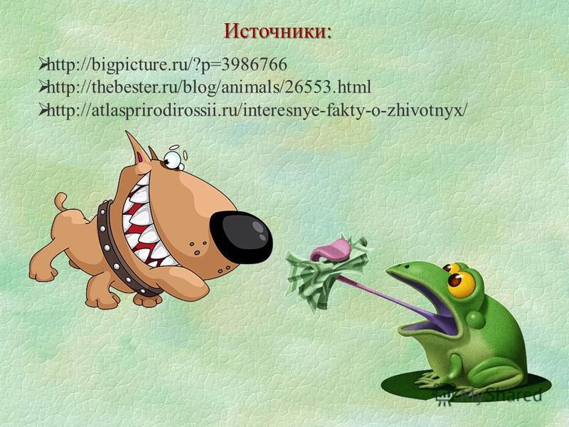 http://bigpicture.ru/?p=3986766 http://thebester.ru/blog/animals/26553. html http://atlasprirodirossii.ru/interesnye-fakty-o-zhivotnyx/ Источники: