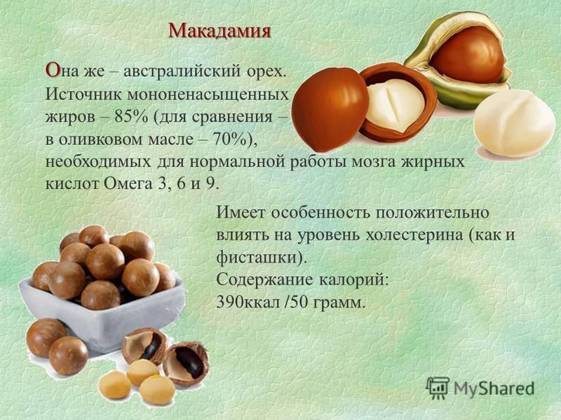 Макадамия О О на же – австралийский орех. Источник мононенасыщенных жиров – 85% (для сравнения – в оливковом масле – 70%), необходимых для нормальной работы мозга жирных кислот Омега 3, 6 и 9. Имеет особенность положительно влиять на уровень холестер