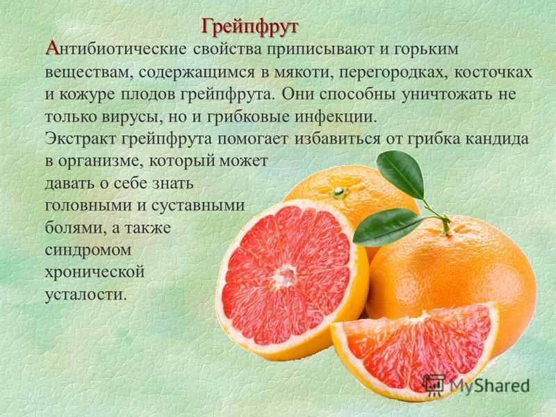 Грейпфрут А А нтибиотические свойства приписывают и горьким веществам, содержащимся в мякоти, перегородках, косточках и кожуре плодов грейпфрута. Они способны уничтожать не только вирусы, но и грибковые инфекции. Экстракт грейпфрута помогает избавить