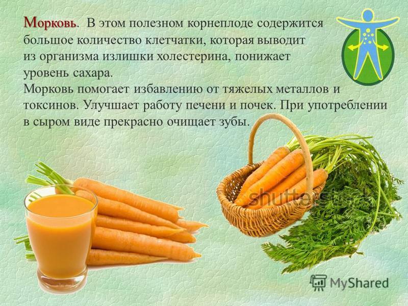 М орковь М орковь. В этом полезном корнеплоде содержится большое количество клетчатки, которая выводит из организма излишки холестерина, понижает уровень сахара. Морковь помогает избавлению от тяжелых металлов и токсинов. Улучшает работу печени и поч
