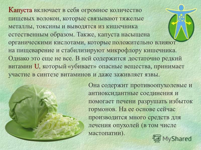 К апуста К апуста включает в себя огромное количество пищевых волокон, которые связывают тяжелые металлы, токсины и выводятся из кишечника естественным образом. Также, капуста насыщена органическими кислотами, которые положительно влияют U на пищевар