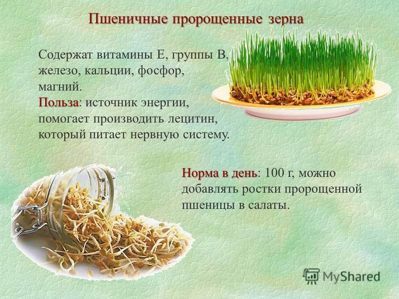 Пшеничные пророщенные зерна Содержат витамины Е, группы В, железо, кальции, фосфор, магний. Польза Польза: источник энергии, помогает производить лецитин, который питает нервную систему. Норма в день Норма в день: 100 г, можно добавлять ростки пророщ
