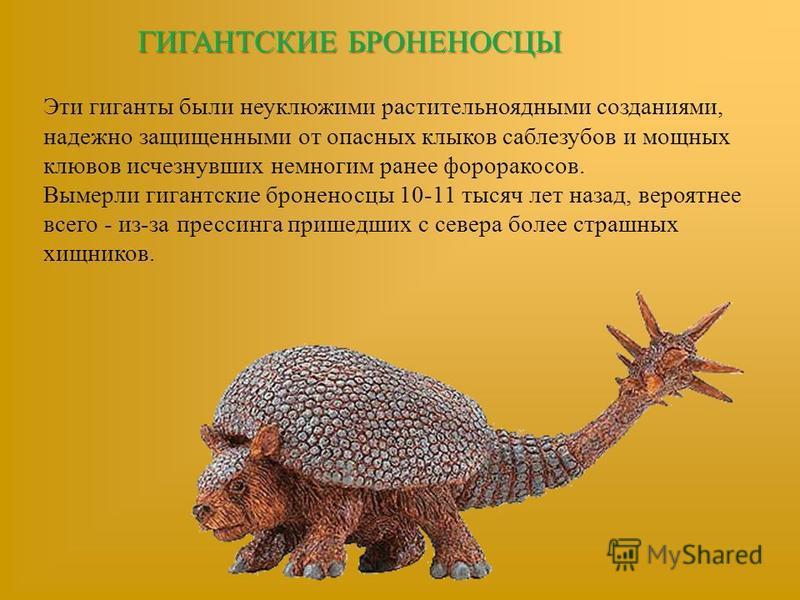 ГИГАНТСКИЕ БРОНЕНОСЦЫ Эти гиганты были неуклюжими растительноядными созданиями, надежно защищенными от опасных клыков саблезубов и мощных клювов исчезнувших немногим ранее фороракосов. Вымерли гигантские броненосцы 10-11 тысяч лет назад, вероятнее вс